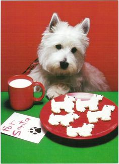 For Santa - one of my all time favorite cards! How I miss Buddy and Kramer, my two Westies!