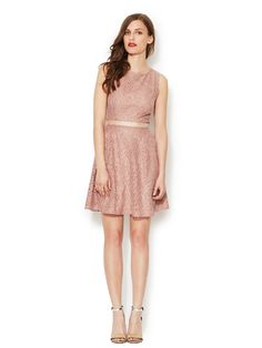 Lace Swing Dress by Ava & Aiden at Gilt