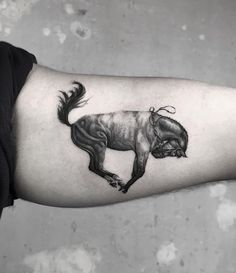 Serkan Demirboga horse tattoo