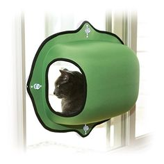 Cat shelves are sooooo cool! Gotta get me one of these.