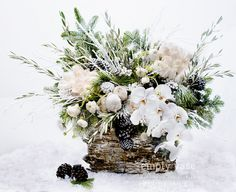 """WOODLAND FROST by Empty Vase Florist The winter season has arrived! With an elegant selection of white roses, pine cones, Xmas greens, ranunculus, Phalaenopsis Orchids, white snow branches, white berries, and pine branches gently dusted with faux snowflakes, all resting in a 12""""x16"""" vase lined with Birchwood, this arrangement captures the tranquil beauty of the season's first snowfall."""