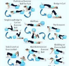 Hi everyone here are some nice exercise using a Medecin ball. I would really recommend it as those exercise are consistent and work efficiently on your core abs lower back.. As always make sure your positioning is right which is always keep your back straight core tight a consistent breathing look forward and work hard!!  Have a great Monday everyone!!  . Follow @wealthlilyhealthy - Credit to diet.com  - #nutrition #nutritionist #nutritional #nutritioncoach  #nutritiongoals #fitness… Single Leg Bridge, Back Extensions, Side Crunches, Have A Great Monday, Health Coach, Push Up, Work Hard, Healthy Lifestyle, Fitness Motivation