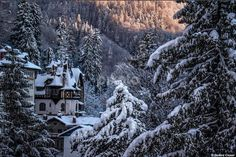 Sinaia Romania Peles Castle, Image Nature, Romania, Snow, Landscape, Amazing, Pictures, Outdoor, Beautiful Images