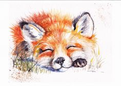 Print  of Original Watercolour Painting by Be Coventry,Realism, Sleeping Fox