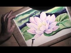 Water Lily in watercolor - painting process time lapse - YouTube