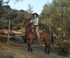 Mounted on Hoot