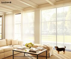 Let in some natural light with Hunter Douglas' Luminette® Privacy Sheers! Privacy Shades, Privacy Blinds, Shades Blinds, Window Coverings, Window Treatments, Sheer Shades, House Blinds, Sliding Glass Door, Glass Doors