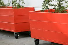 åpent hus: Blomsterkasser /wooden crates for the yard Wooden Crates, Small Gardens, Planter Pots, Yard, Diy, Outdoor, Terrace, Wood Boxes, Outdoors