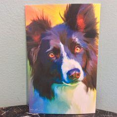 Kippy, Border Collie Dog Postcard #bordercollie #dog #postcard