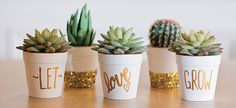 Adorable & afforadable,can you ask for more? -Wedding Ideas, DIY Wedding Ideas, Wedding Favor Ideas