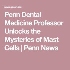 Penn Dental Medicine Professor Unlocks the Mysteries of Mast Cells | Penn News