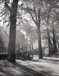 Dirk de Herder:  Painter in Amsterdam, 1946.