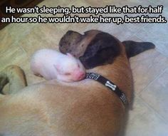 Well, my heart just melted.