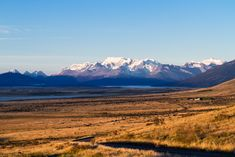 Steppe Patagoniens in El Calafate, Chile Chile, Patagonia, Torres Del Paine National Park, Seen, Vacation, Landscape, World, Places, Pictures