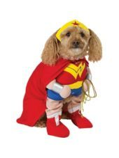 Your pup is ready to take on the bad guys in our Wonder Woman Dog Costume. This Wonder Woman costume for dogs includes a dress and headband. Pet Halloween Costumes, Pet Costumes, Dog Halloween, Halloween City, Halloween Outfits, Wonder Woman Costumes, Superman, Batman, Shrek