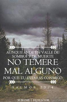 """""""Aunque ande en valle de sombra de muerte, No temeré mal alguno, porque tú estarás conmigo; Tu vara y tu cayado me infundirán aliento."""" ( SALMOS 23 : 4 )"""