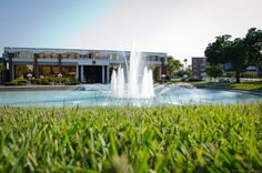 Your UCF End-Of-Semester Bucket List | Her Campus UCF