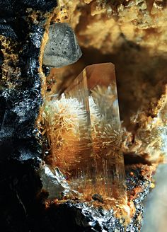 ❥ Mimetite needles in Gypsum with grey Cerussite in Galena vug / Trentini Mine, Veneto, Italy