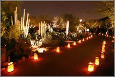 desert weddings   ... Photos of the Arranging the Desert Botanical Garden Wedding Ceremony