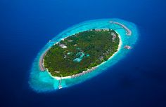 Hotel Deal Checker finds Dusit Thani Maldives deals on all the top travel stites at once. Best Price Guarantee on Dusit Thani Maldives at Hotel Deal Checker. Maldives Luxury Resorts, Maldives Resort, Maldives Travel, Hotels And Resorts, Maldives Trip, Maldives Beach, Resort Spa, Bora Bora, Islands