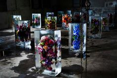 Iced Flowers: Exotic Floral Bouquets Locked in Blocks of Ice by Makoto Azuma