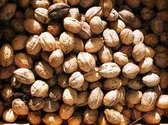 #Cancer colorectal : manger des noix serait bénéfique contre les rechutes - Sciences et Avenir: Sciences et Avenir Cancer colorectal :…