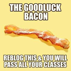 Want to pass all you're classes from good luck bacon?