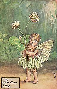 flower fairy inspiration :)
