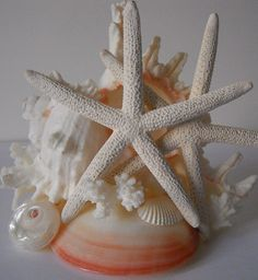 Coral Clam Shell Cake Topper from Seashell Beach Designs on Etsy