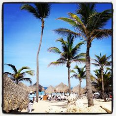 hard rock hotel & casino. punta cana. I cannot believe I will actually BE there in a few days.....