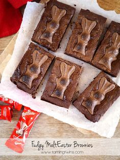 MaltEaster-Brownies a perfect Easter Chocolate treat. Brownie Recipes, Cake Recipes, Dessert Recipes, Desserts, Brownie Ideas, Quick Dessert, Pudding Recipes, Snack Recipes, Snacks