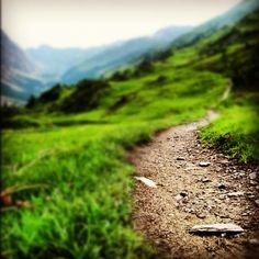 I want to be able to fly down a hill- I'm not so excited about trail running uphill, but I don't want to limit myself
