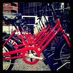 Japan - Yokohama Baybike (300 bikes)