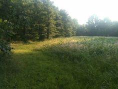 Beautiful morning walk!