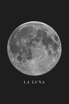 Ciel Nocturne, Luna Moon, Moon Pictures, Space And Astronomy, Stars And Moon, The Moon, Moon Moon, Moon Art, Galaxy Wallpaper