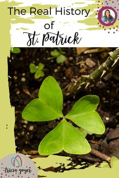 The Real History of St. Patrick Church History, History Books, Wicked Ways, Joy Of The Lord, Power Of Prayer, Time To Celebrate, Family Traditions, Educational Activities, New Words