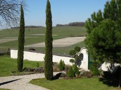 A terrace in the #vineyards of #Cognac : the French Tuscany  #weekend #winetour