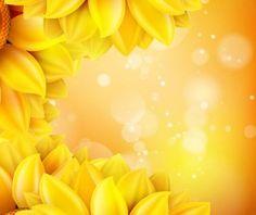 Sunflower flower with bokeh vector background 17