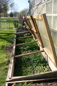 http://green-acre-plants.com/Images/History/2007/4812-Cold-frames-in-backyar.jpg