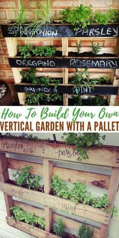 How To Build Your Own Vertical Garden with a Pallet - Making a garden out of a pallet is genius. Pallets are everywhere, you should be able to find one for free at a local store or on Craigslist. garden How To Build Your Own Vertical Garden with a Pallet Vertical Pallet Garden, Herb Garden Pallet, Vertical Gardens, Palette Herb Garden, Pallet Gardening, Pallet Garden Walls, Pallet Garden Ideas Diy, Raised Herb Garden, Pallet Planter Box