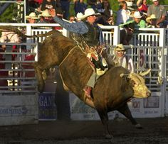 It's not summer in Steamboat without a pro rodeo!