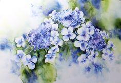 Hydrangea von Bev  Wells