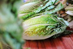 caesar salad, ceasar salad