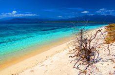 stunning water shades!  Gili Meno Island, Indonesia