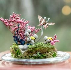 Butterfly Terrarium Kit, Real Butterfly Under Glass Dome Terrarium, Woodland Miniature Scene #terrarium #glass dome # butterfly