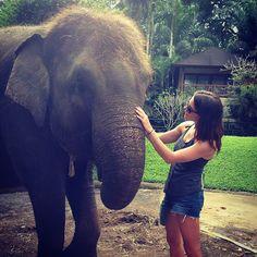 La twitpic d'Ashley Greene