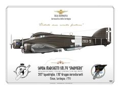 "Savoia-Marchetti SM.79 Sparviero (Italian for ""Sparrowhawk"")"