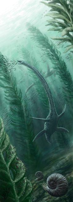 "Upper Jurassic underwater ""forest"" of Volga region. By NGZver"