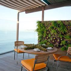 http://www.unquadratodigiardino.it/forum-di-giardinaggio/in-diretta-da-unquadratodigiardinoit/737-a-proposito-di-vertical-garden-realizzare-con-niente-un-giardino-in-verticale-di-grasse.html