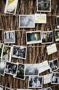 Wrap a tree or two with string lights and photographs to display memories.   32 Totally Ingenious Ideas For An Outdoor Wedding Tem árvores no local do seu casamento? Por que nao fazer delas um mural de fotos que contem a história de vcs?